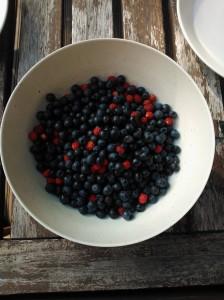 Bilberry vai blueberry?